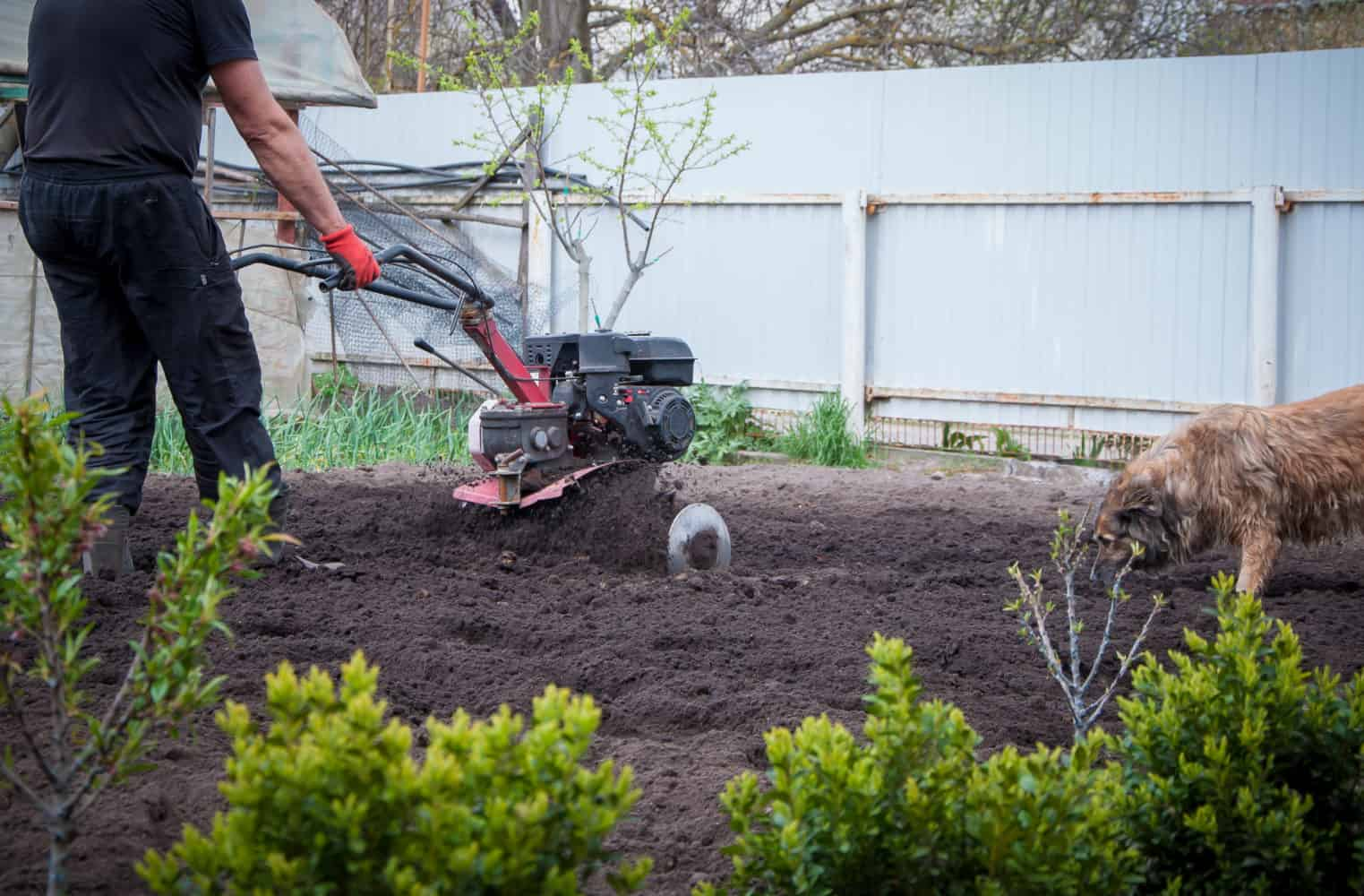 What are the Different Types of Garden Tillers