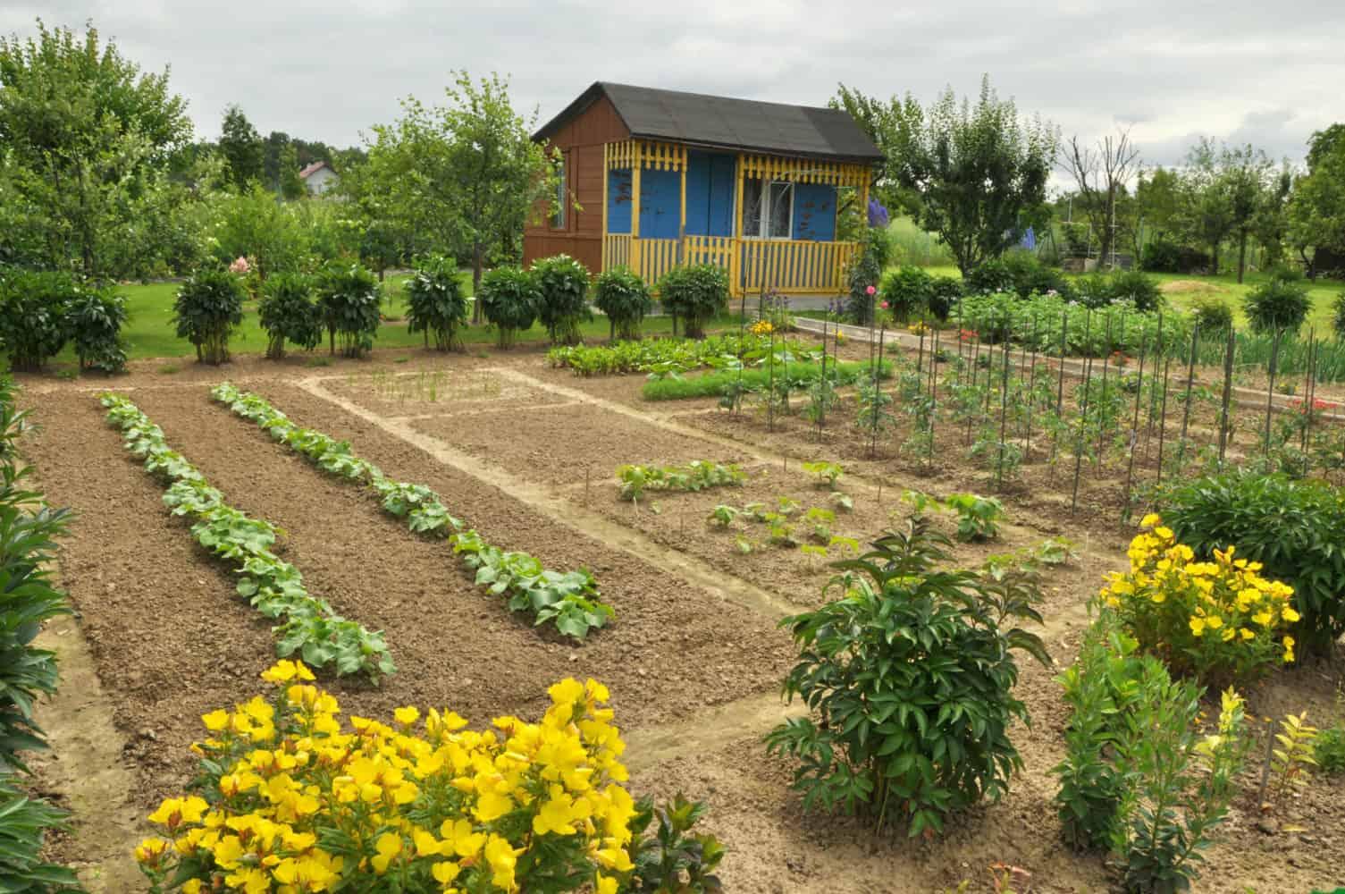 garden size for tiller