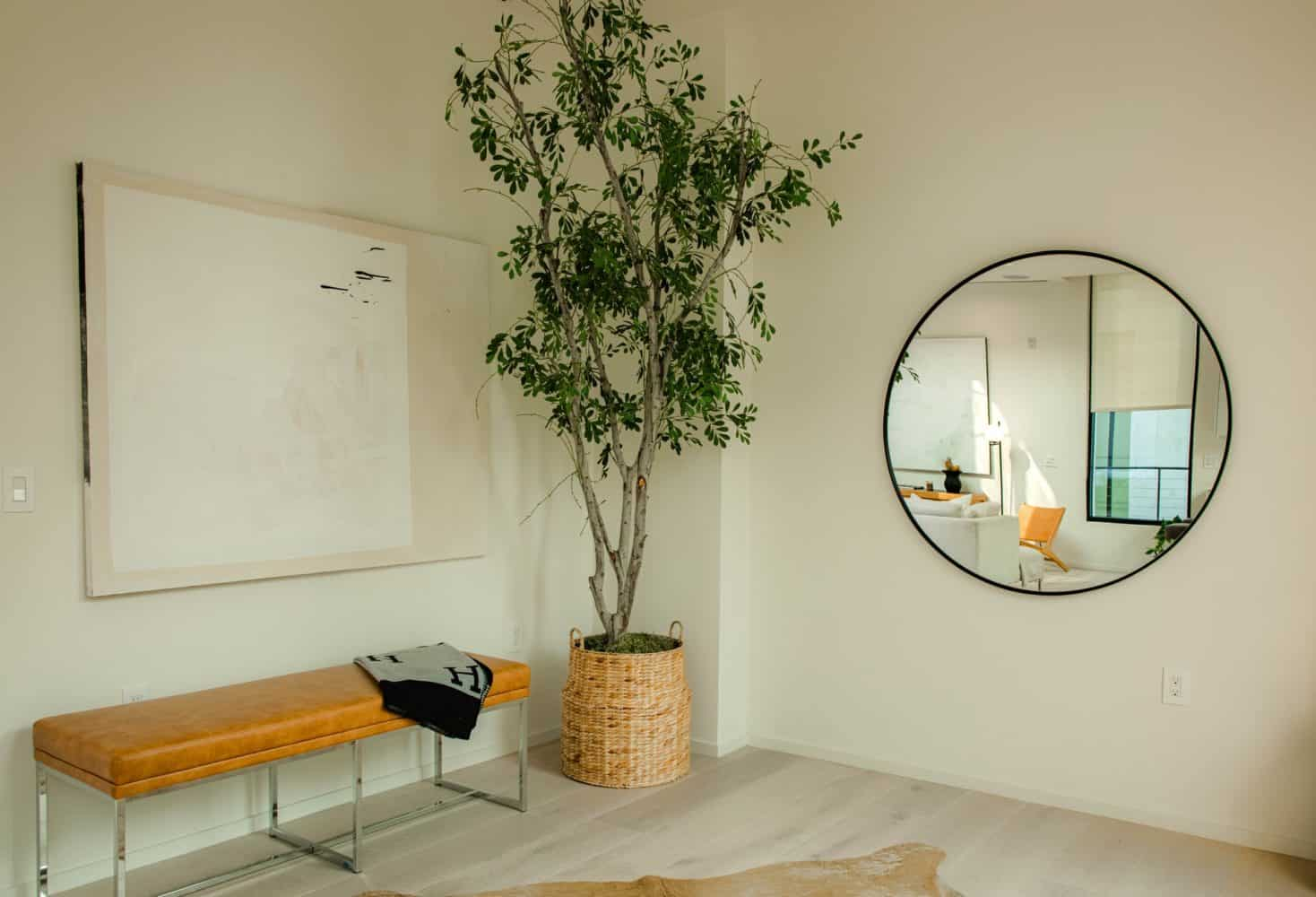 mirror in the living room